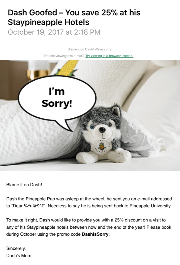 Staypineapple Hotels Oops Email Example